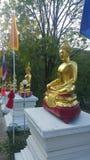 Buddha. Golden.  statue. Believe. Religion Stock Image