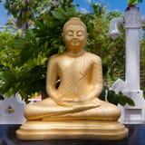 Buddha-Goldstatue in Matara, Sri Lanka Stockbild