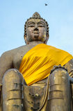 Buddha gorgeous Royalty Free Stock Image
