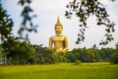 Buddha grande Imagens de Stock