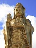 buddha guld Arkivbilder