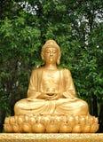 buddha guld- meditera staty Arkivbilder