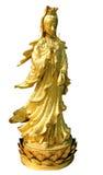 buddha guld- quan yin arkivfoto