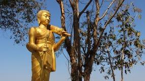 buddha guld- standing royaltyfri fotografi