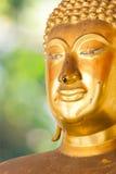 Buddha guld- staty. Royaltyfri Foto