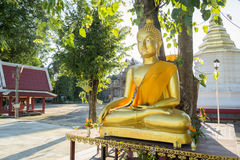 buddha guld- staty Royaltyfria Bilder