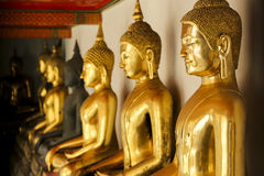 buddha guld- statyer Royaltyfria Bilder