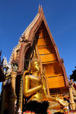 buddha guld- stort Arkivfoton