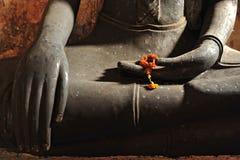 buddha händer Arkivbild