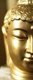 buddha half huvud s Arkivfoto