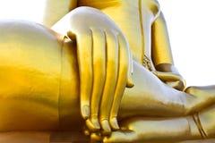 Buddha hand. Royalty Free Stock Photo