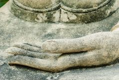 Buddha hand Stock Image