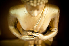buddha hand Arkivfoto