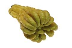 Buddha Hand Fingers Stock Image
