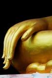 buddha hand s Royaltyfria Bilder