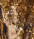 Buddha Head with Autumn Leaves Backdrop Stock Images
