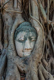 Buddha Head banyan tree Wat Mahathat Ayutthaya bangkok Thailand Stock Photo