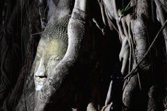 buddha head bild Arkivfoton
