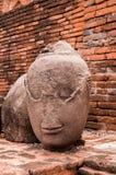 buddha head bild Arkivbilder