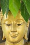buddha head bild Fotografering för Bildbyråer
