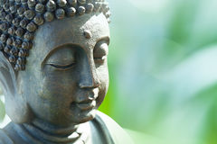 buddha head s Arkivfoto