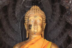 Buddha head statue Royalty Free Stock Image
