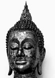 Buddha head statue. On white background Stock Photos