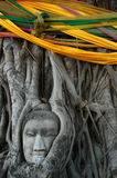Buddha Head Surrounded by Roots. A stone head of Buddha nestled in the embrace of bodhi tree's roots in Wat Prha Mahathat Temple in Ayutthaya, Thailand Stock Image