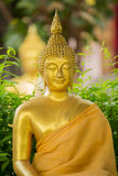 The  Buddha Head in Thailand temple. Golden Buddha Stock Images