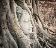 Buddha head in Wat Mahathat Stock Photography