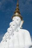 Buddha on him in Thailand Stock Images
