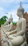 Buddha i den Ayutthaya templet thai Thailand Royaltyfria Foton