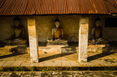 Buddha i den thailändska ayuttayaen Arkivfoton