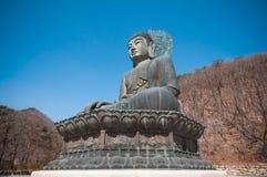 Buddha i det Sinheungsa tempelet Arkivbild