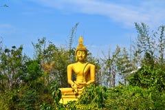 Buddha i skogen Arkivbild