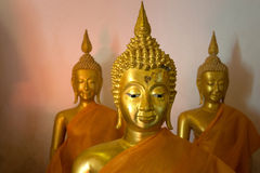 Buddha i tempel, tror i Thailand kultur Arkivfoto