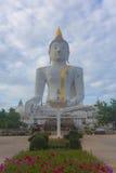 Buddha idol worship Royalty Free Stock Photo