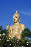 Buddha im Garten Stockfoto