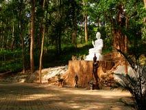 Buddha im Tal Stockbild