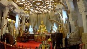 Buddha im Tempel des Zahnes des Buddhas stock footage