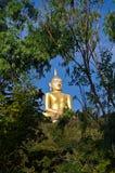 Buddha im Wald Stockfoto