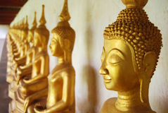 Buddha image. Row of Buddha images in a Laos's temple. Selective focus stock photos