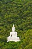Buddha image. White Buddha image near mountain on trees background stock photography