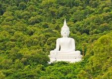 Buddha image. White Buddha image near mountain on trees background royalty free stock photo