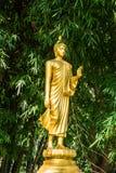 Buddha image at bamboo forest Stock Image