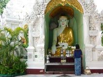 Buddha image being paying respect Royalty Free Stock Image