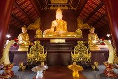 Buddha image at chiang mai temple, Thailand Royalty Free Stock Images
