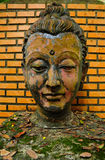 Buddha image head. In the old temple in wat Umong  ,Chaingmai Thailand Royalty Free Stock Images