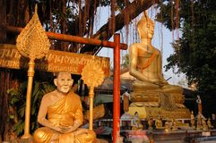 Buddha image and holy man sitting under Bodhi tree Stock Photography