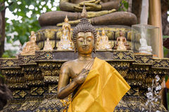 Buddha image in peace 1 Stock Image